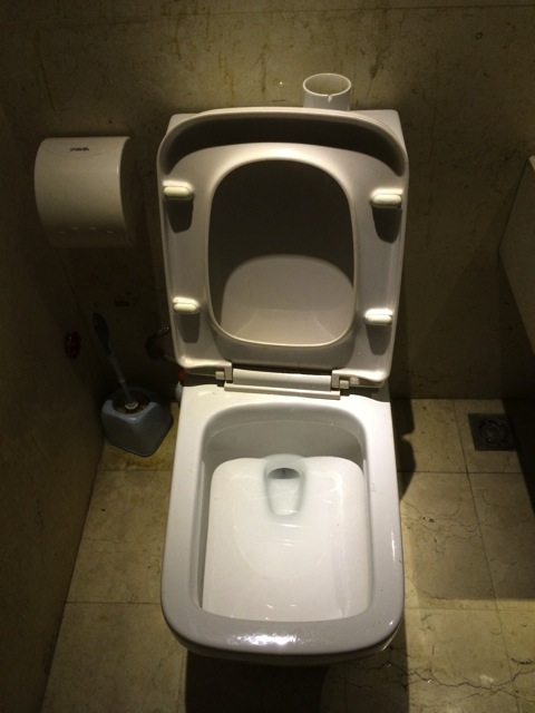 中国トイレの形