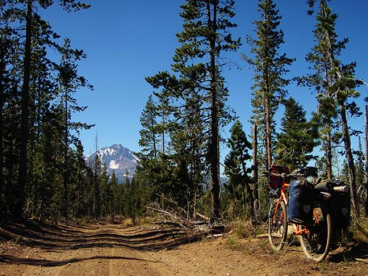 自転車の 自転車を買う時期 : 自炊はせずとも一人でキャンプ ...