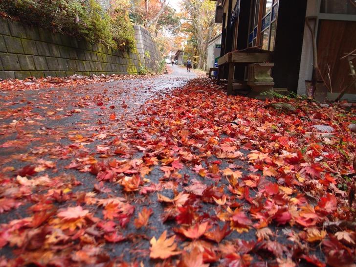 三峯神社の紅葉2014年見に行ってみたらこんなところだった
