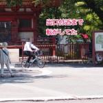 川越喜多院内自転車通行と駅行く途中のだんごやさん