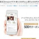 Amazonギフト券を3000円分以上購入で500ポイント還元/期間限定かも知れないから急いだ