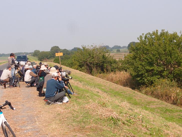 川越ライディング野鳥撮影