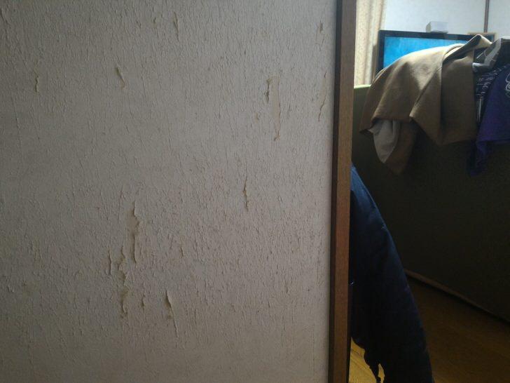 ネコにひっかかれた壁