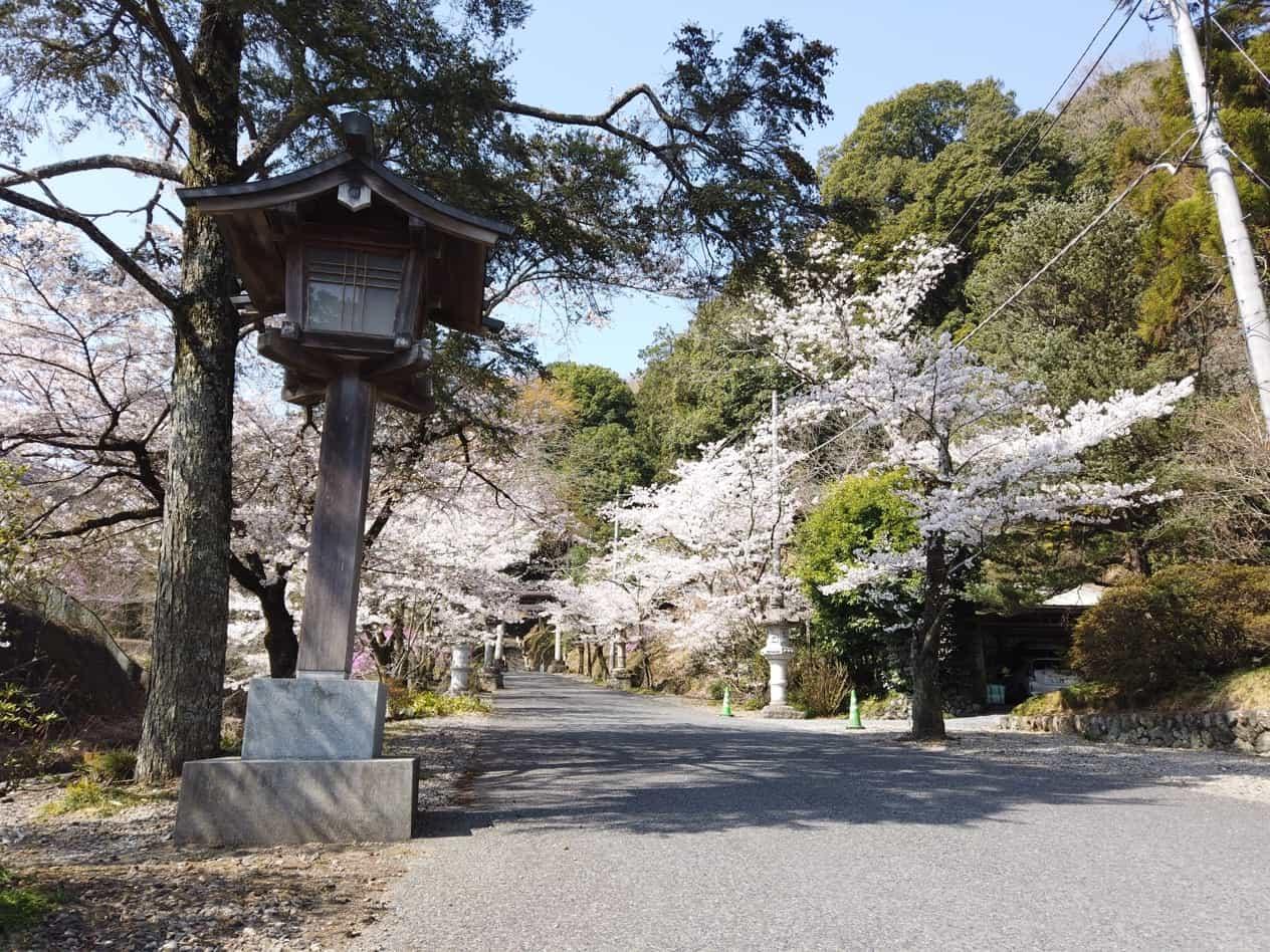 金鑚神社一之鳥居からの眺め