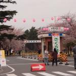 2016年熊谷自衛隊さくら祭