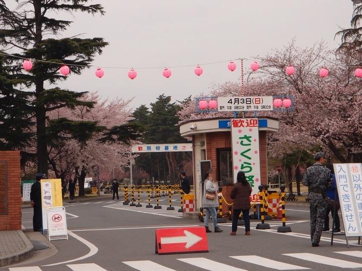 2016年熊谷自衛隊さくらまつり