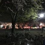 【衝撃】熊谷荒川桜堤のライトアップは実際にはテキ屋の電灯によるものだったと判明