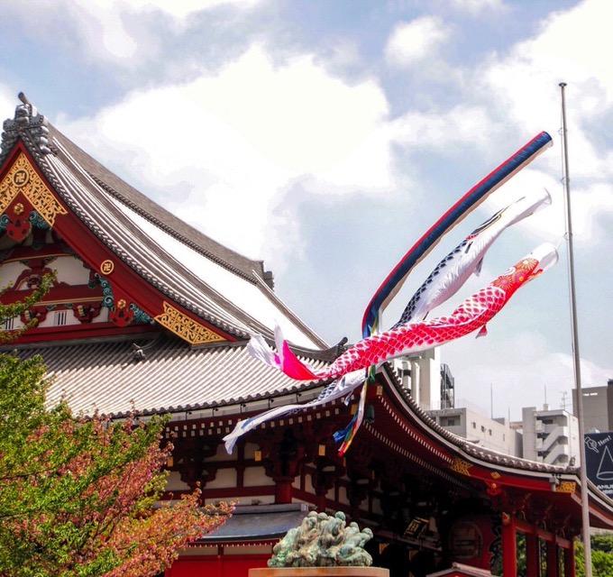 浅草寺本堂と鯉のぼり