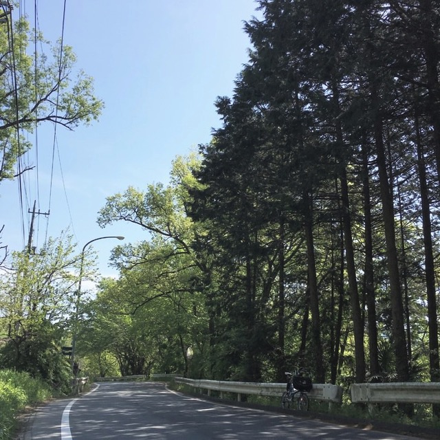 秩父の道路