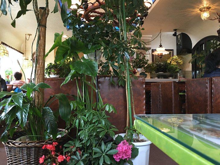 富士吉田市コーヒーとパフェの店マスコット