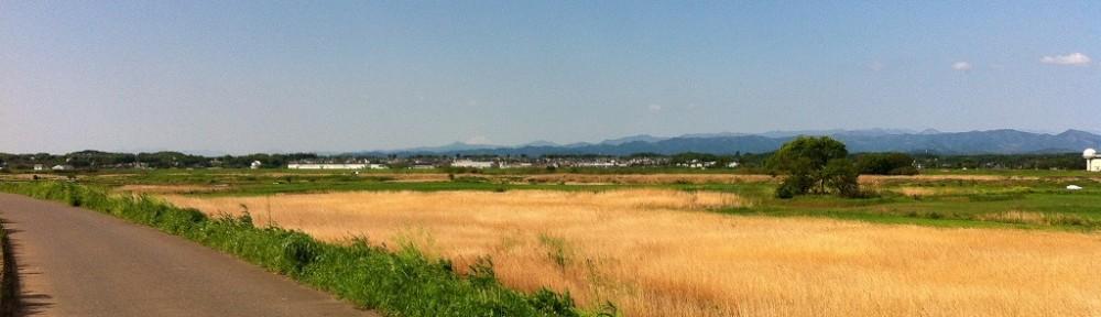 荒川北岸サイクリングで富士山
