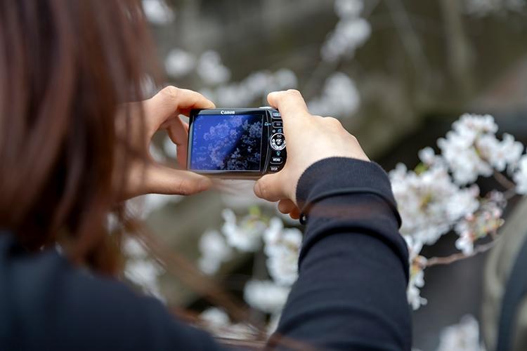デジカメで写真を撮ったら即iPhoneに入れてブログを書く