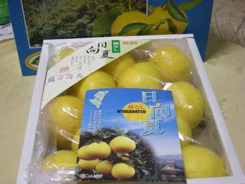 宮崎県の産物