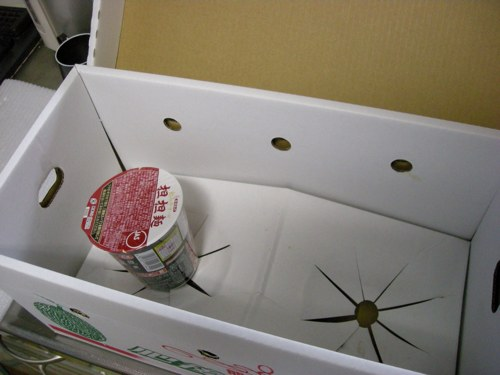 宮崎県の友達から届いたステキな果物2013夏